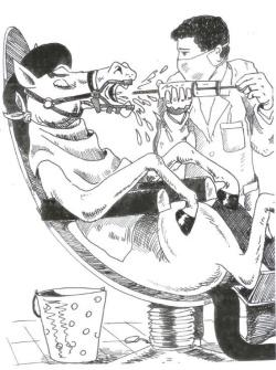 karikatura6